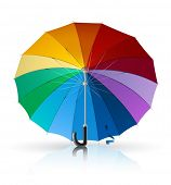 umbrella vector illustration isolated on white background