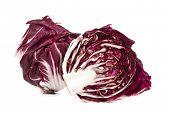 whole and half radicchio lettuce isolated on white