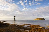 stock photo of anglesey  - Lighthouse at Penmon and Puffin Island - JPG