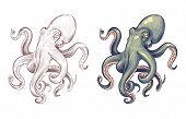 Octopus. Seafood Sea Animal Squid With Tentacles Cartoon And Hand Drawn Style. Octopuses Vector Set  poster