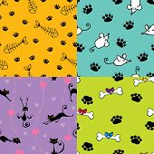 Cute Pets Patterns