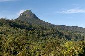 Mount Adam's Peak / Sri Pada