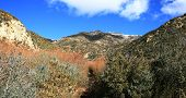 Panorama de Potrero John Trail