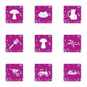 Private Plot Icons Set. Grunge Set Of 9 Private Plot Icons For Web Isolated On White Background poster