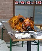 Wowl Roasted Hog!