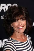 LOS ANGELES - OCT 4:  Adrienne Barbeau arrives at the