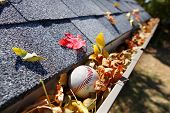 image of shingle  - Rain gutter full of autumn leaves with a baseball - JPG