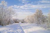 Snow Footpath.