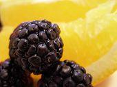 Blackberries & Oranges