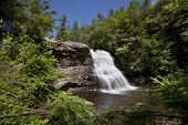 Swallow Falls State Park encompasses the Youghiogheny River and is home of Muddy Creek Falls.  This