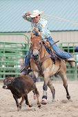 stock photo of calves  - Young cowboy roping a calf during a rodeo - JPG