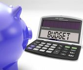 Budget Calculator Shows Spending And Costs Management