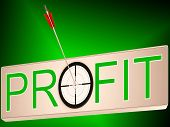 Profit Shows Earning Revenue And Business Growth