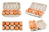 Conjunto de huevos