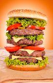 Huge Hamburger