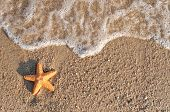 Starfish on the sandy beach and waves coming, with copy-space for your text on the sand