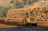 image of tractor-trailer  - Small wheeled loader moving logs around the log yard at a local sawmill in Oregon - JPG