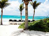 Tropical Beach View