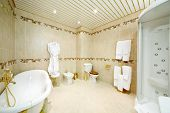 Clean bathroom with bath, shower cabin, toilet and bidet in classic style.