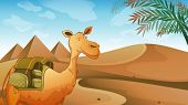 Illustration of a camel at the desert