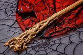 Magic Wand Is On Web