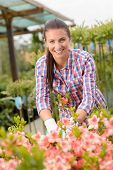 Garden center woman employee working in pink flowerbed smiling