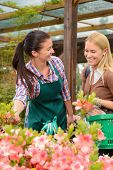 Woman customer talking to worker about plants in garden center