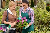 Garden center worker showing customer woman potted flower