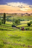 Kentucky's Bluegrass region