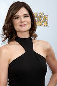 LOS ANGELES - JUN 26:  Betsy Brandt at the 40th Saturn Awards at the The Castaways on June 26, 2014