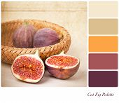 A basket of cut and whole figs, vintage style, in a colour palette with complimentary colour swatche