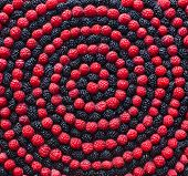 Spiral of berry. Raspberry and mulberry