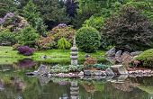 Wide View Of A Japanese Garden
