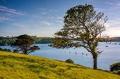 River Helford Cornwall