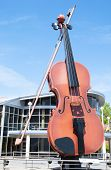 The Largest Violin