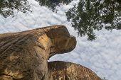 Rock That Look Like A Cobra On Sigiriya Park