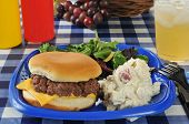 Cheeseburger On A Picnic Table