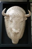 stock photo of bull head  - Bull head statue. Plaster bull head statue.