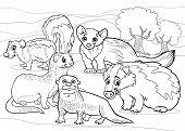 Mustelids Animals Cartoon Coloring Page