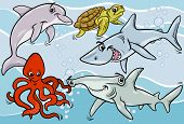 Sea Life Animals And Fish Cartoon