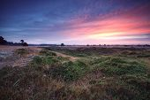 Sunrise Over Summer Meadows