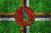 Dominica Flag Color Grass Texture Background