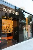 Roberto Cavalli Store