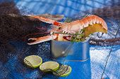 Crustacean Canned