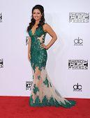 LOS ANGELES - NOV 23:  Danica McKellar arrives to the 2014 American Music Awards on November 23, 2014 in Los Angeles, CA