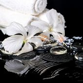 Cryogenic Spa Still Life Of Delicate White Hibiscus, Zen Stones With Drops, Snow, Ice And Towels On