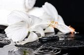Beautiful Spa Concept Of Delicate White Hibiscus, Zen Stones With Drops And Towels On Ripple Water,
