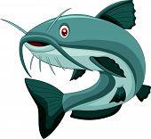 image of catfish  - illustration of Cartoon catfish isolated on white - JPG