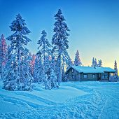 Cottage In Snowy Winter Forest