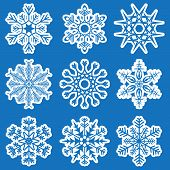 Collection Of Different White Snowflakes